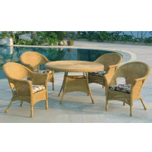 Summerset 5 Piece Outdoor Wicker Dining Set